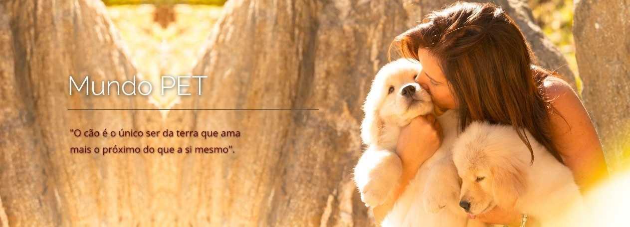 cirurgia-catarata-veterinaria-encrenquinhas-banner1