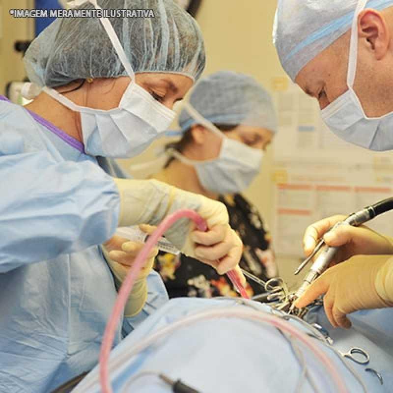 Cirurgia de Coluna Veterinária Pompéia - Cirurgia Veterinária Cachorro