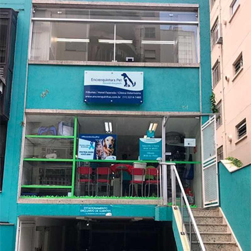 Clinica Veterinária Popular Santana - Clinica Veterinária Gatos