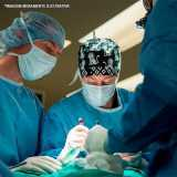 cirurgia veterinária especializada Higienópolis