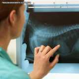 clínica para exame radiográfico veterinário Alto de Pinheiros