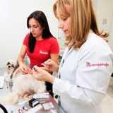 clinica veterinária de exames