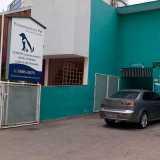 empresa de dermatologia veterinaria clinica Alphaville