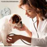 exame físico veterinário Santana