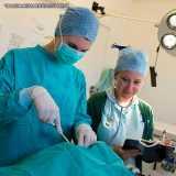 onde faz cirurgia veterinária especializada Higienópolis