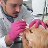 onde fazer exame oftalmológico veterinário Vila Mariana